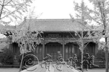 齐鲁孔庙寻访3:济南府学文庙 - 古藤新枝 - 古藤的博客