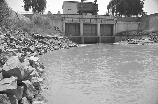 黄河水跋涉148公里汇入南四湖