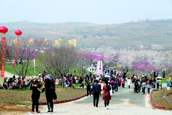 清明小长假,日照乡村踏青游最受游客欢迎接待外地游客74.36万人次